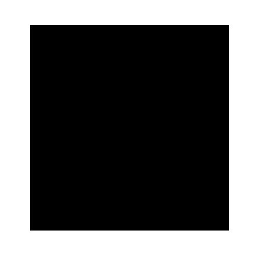логотип линейки Two Geese